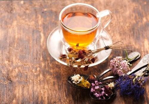 Чай из валерианы и нервы