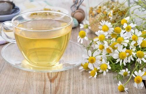Чай из ромашки чтобы хорошо спать