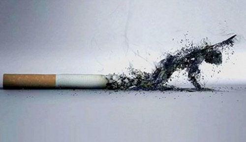 5 причин, чтобы бросить курить. Вы станете лучше выглядеть!