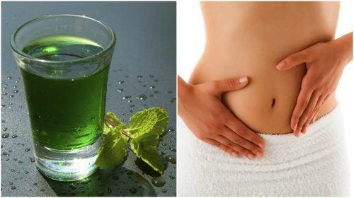 Как приготовить зеленую воду для очищения тела за 3 дня?