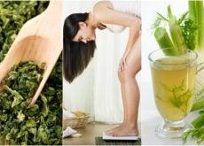Эти 5 лекарственных растений прекрасно помогают похудеть