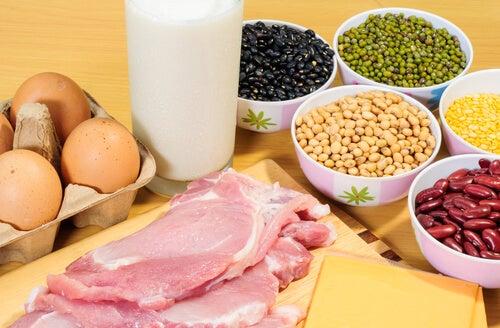 Белки и здоровое питание