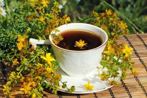 Лекарственные растения помогают бороться с депрессией