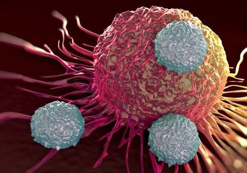 Рак и щелочная диета