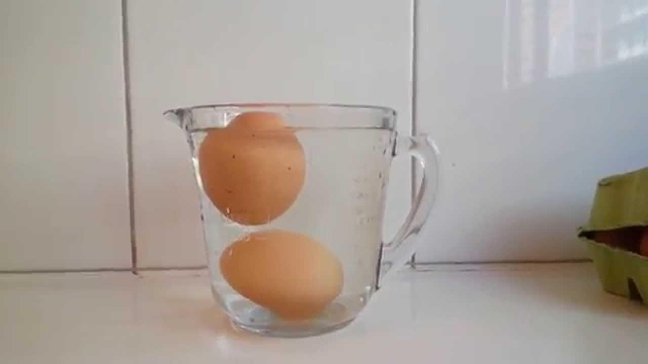 Яйца не испортились