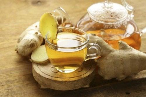 Отвар из имбиря и алоэ вера: натуральный и очень полезный напиток!