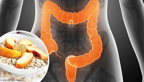 Что следует есть людям, имеющим синдром раздражённого кишечника?