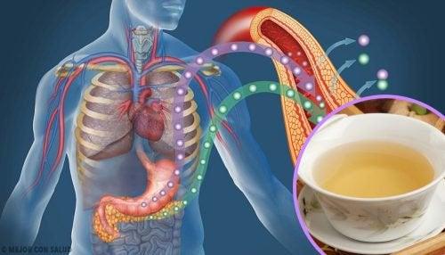 4 травяных чая, которые помогут снизить уровень сахара в крови