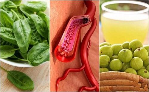 7 продуктов, которые увеличат количество тромбоцитов в крови