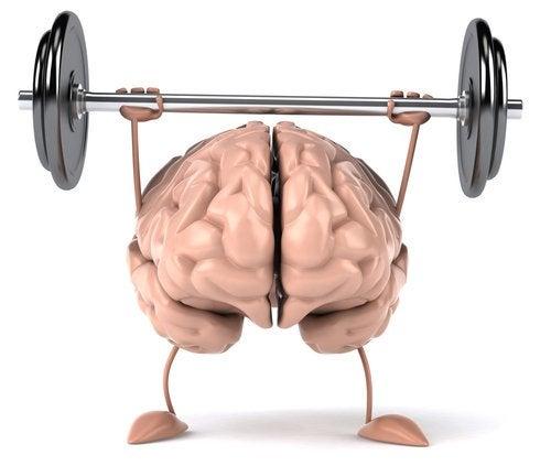 6 упражнений помогут держать мозг в форме