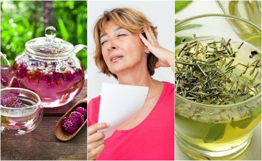 Менопауза: снимите неприятные симптомы при помощи этих 6 натуральных средств