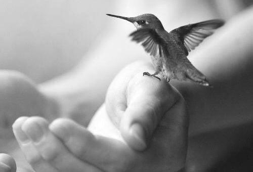 5 привычек, которые помогут стать спокойнее и обрести гармонию