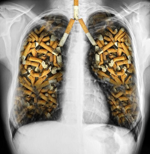 Табак и вред легким