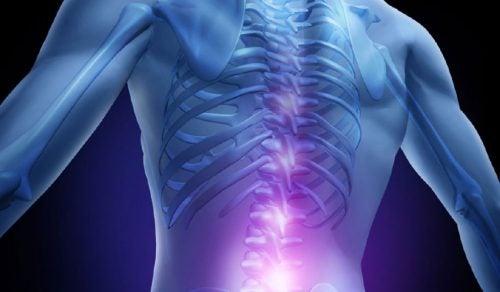 Травмы спинного мозга