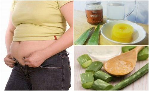 5 домашних рецептов с алоэ вера для очищения толстой кишки