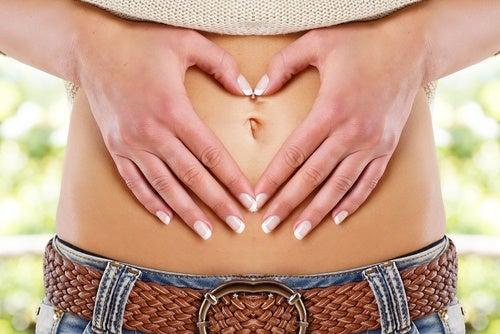 Желатин и пищеварение
