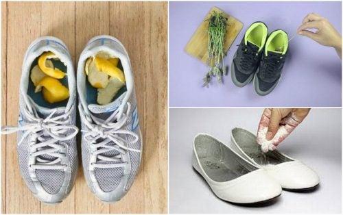 Неприятный запах в обуви: 5 домашних средств решения проблемы