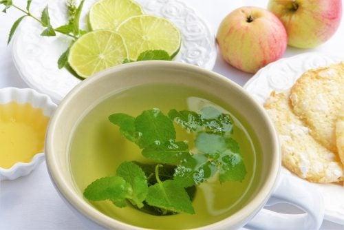 6 настоев, которые помогут вам очистить свой организм от токсинов