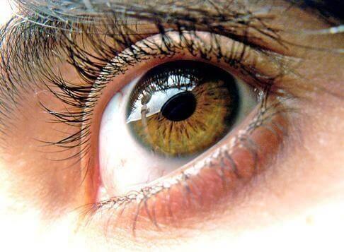 Синдром сухого глаза: 5 натуральных средств для борьбы с ним