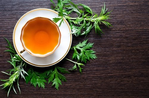 Чай из горькой полыни поможет вам справиться с ожирением печени