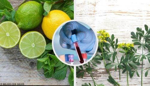 Открой для себя каррулим: средство для очищения крови из руты и лимона