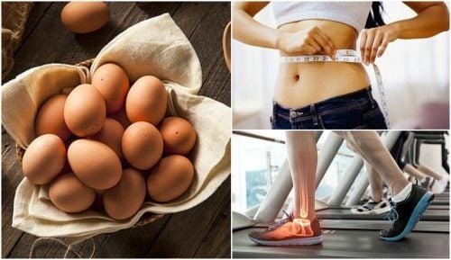 7 причин добавить куриные яйца в свой рацион!