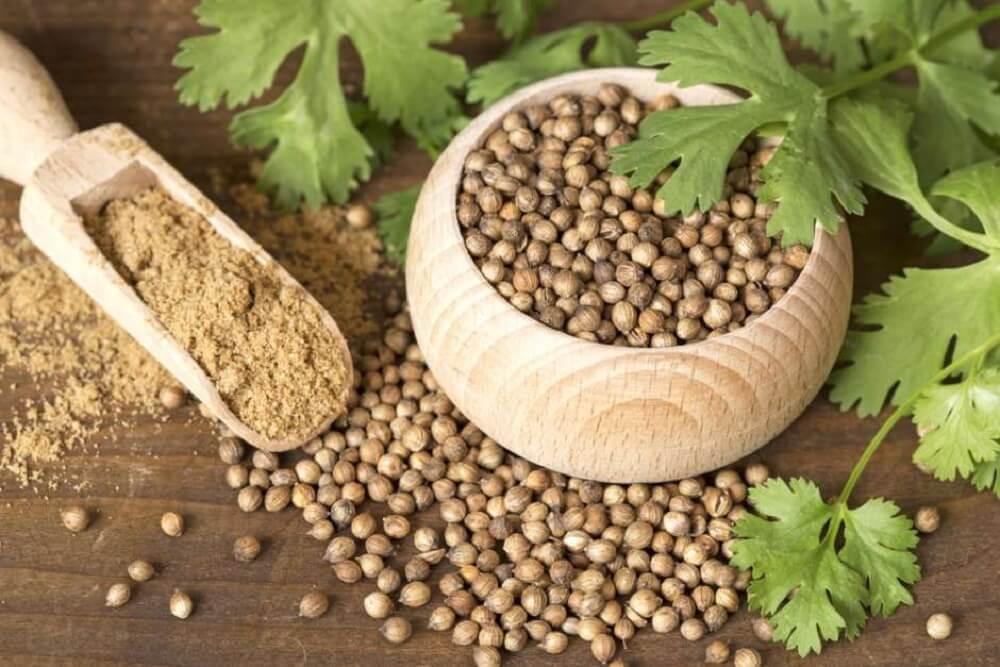 Обильные менструации и семена кинзы