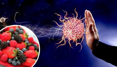 9 продуктов, которые укрепляют иммунитет