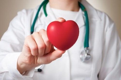 Арбуз полезен для сердца