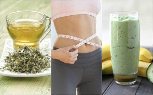Как приготовить 3 напитка с зеленым чаем для похудения?