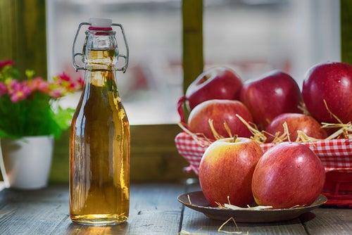 Яблочный уксус помогает бороться с насекомыми