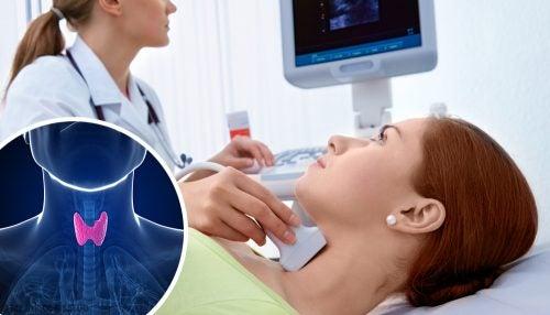 Щитовидная железа и её физиология: узнайте больше!