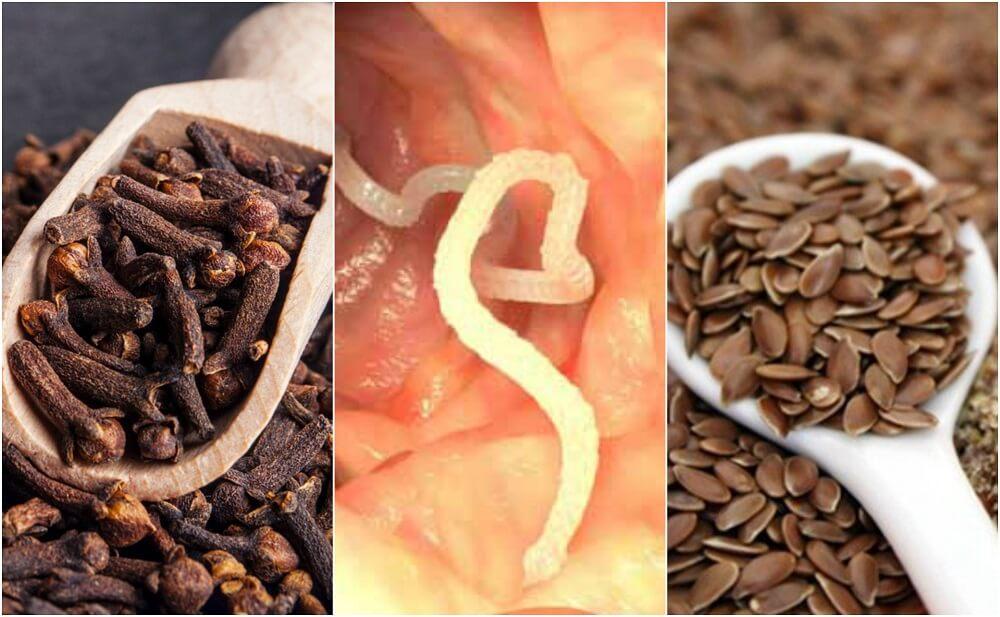Как избавиться от паразитов в теле при помощи гвоздики и льняного семени?