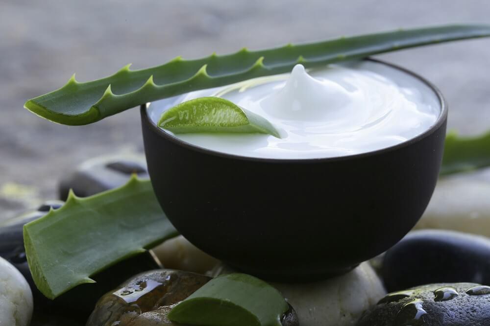 Алоэ вера и кокосовое молоко помогут оздоровить волосы