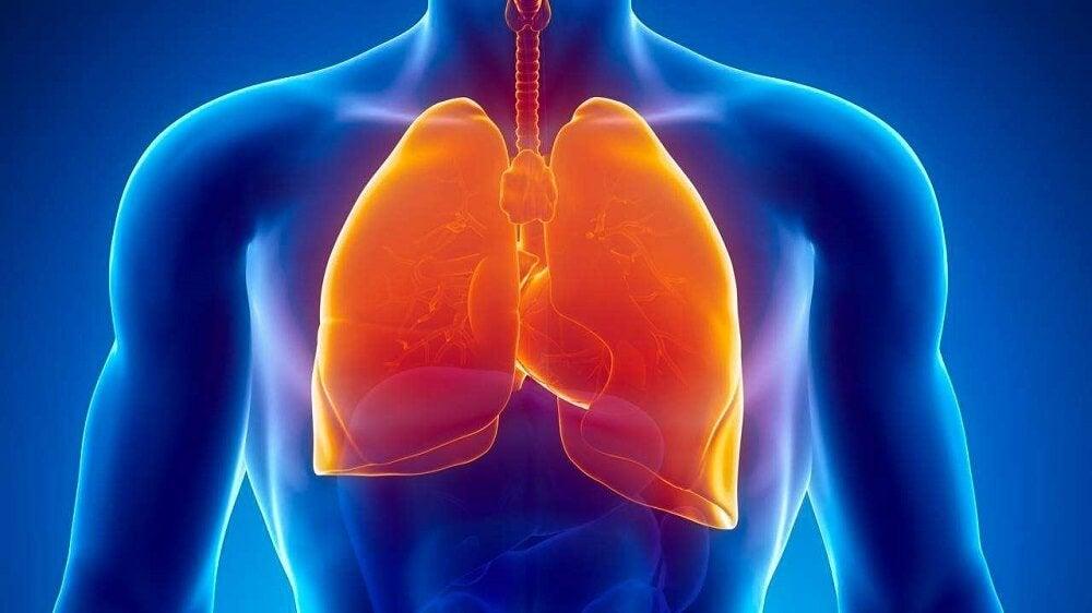 Ночная потливость и туберкулёз