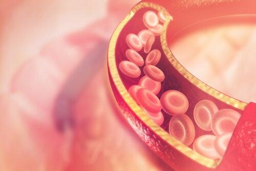 Омега-3 и холестерин