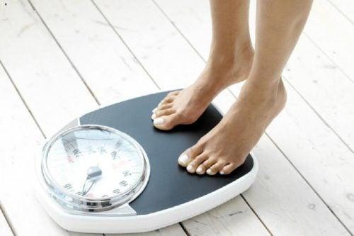 Молоко из семян канареечника помогает снижать вес