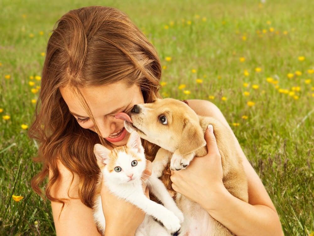 Домашние животные и аллергия