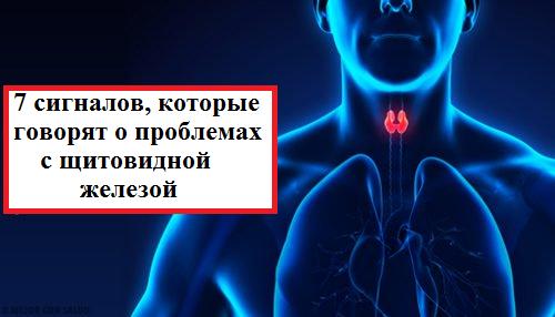 7 сигналов, которые говорят о проблемах с щитовидной железой