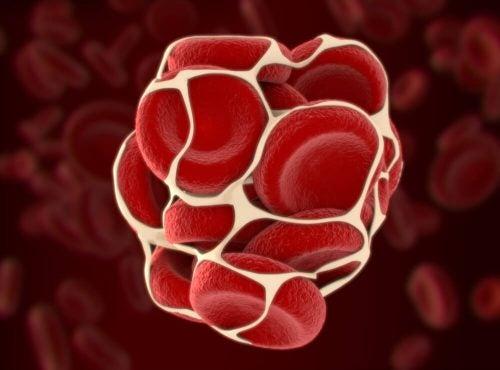 Витамин К и его роль в организме