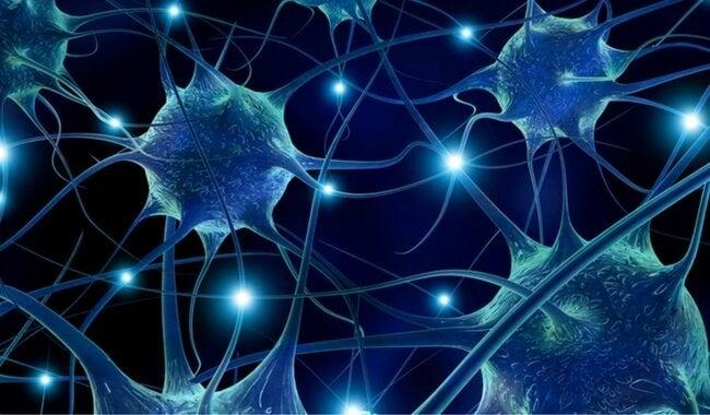 Фисташки предохраняют от заболеваний нервной системы