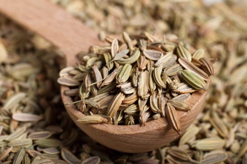 Толстый кишечник и настой семян фенхеля