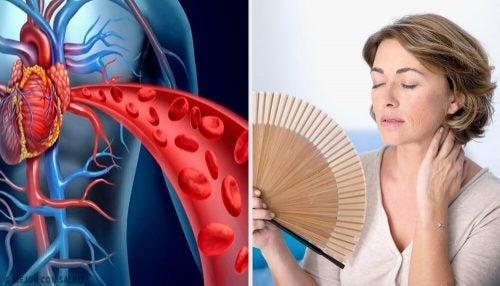 Как менопауза влияет на здоровье сердца: 5 аспектов