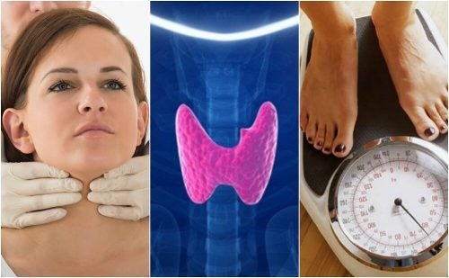 Как узнать, есть ли у вас гипотиреоз? 10 основных симптомов