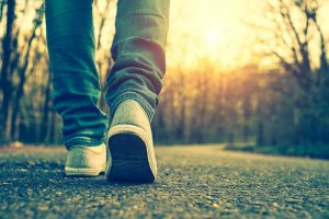 Ежедневная прогулка