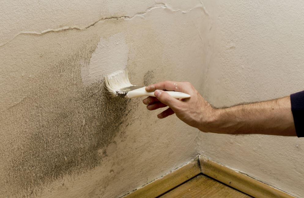 5 способов избавиться от влажности в доме