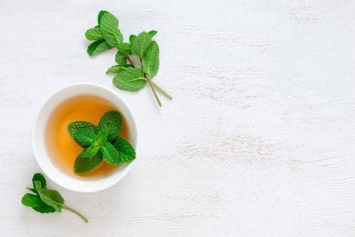Мятный чай снимет кашель