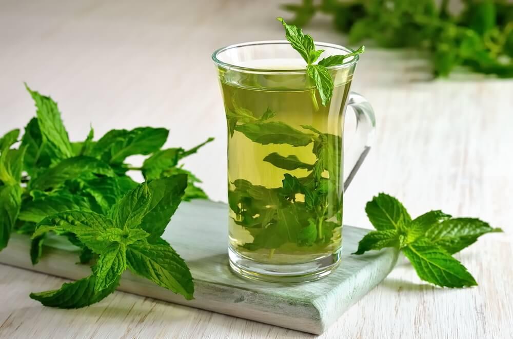 Почему мятный чай так полезен для здоровья?