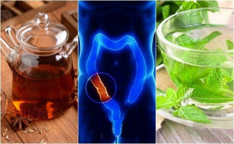 5 целебных настоев, которые помогут очистить толстый кишечник