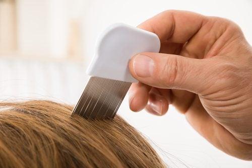 Тонкий гребень поможет реже мыть голову